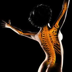 Free research papers on osteoporosis